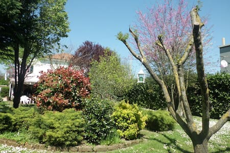 CARA PACE: casa con veranda sul parco - Rimini - Apartment