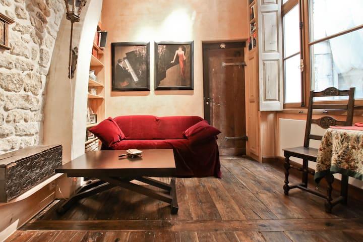 Ile St. Louis/charming/little duple - Paris - Apartment