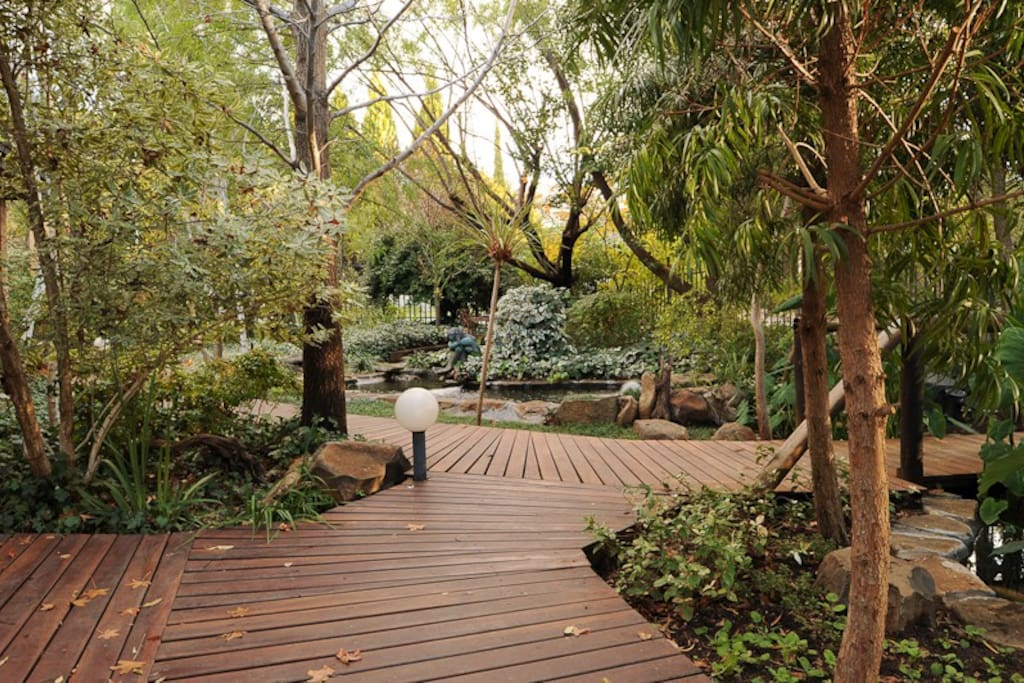Garden to roam in and relax