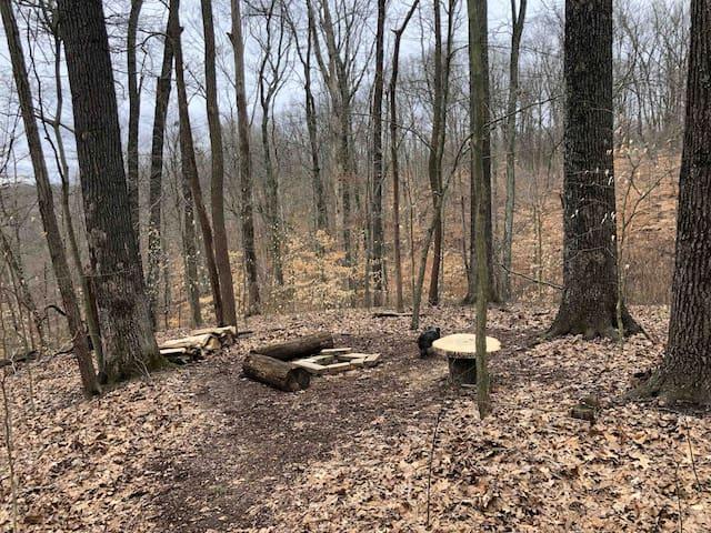 Primitive Campsite/Farm Experience