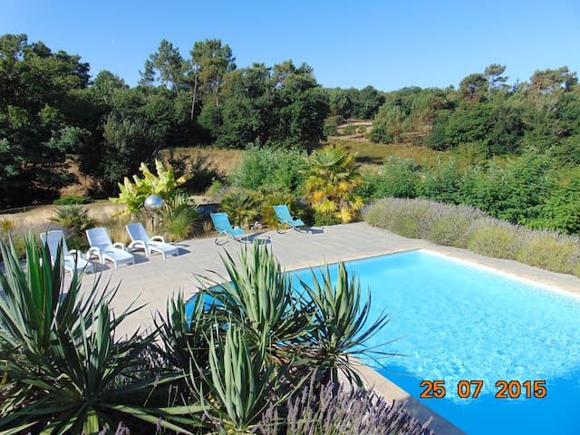 La Romantique - Saint-Bonnet-sur-Gironde - Bed & Breakfast