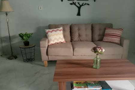 Sofa bed/pull out couch, 14 mins to RCW