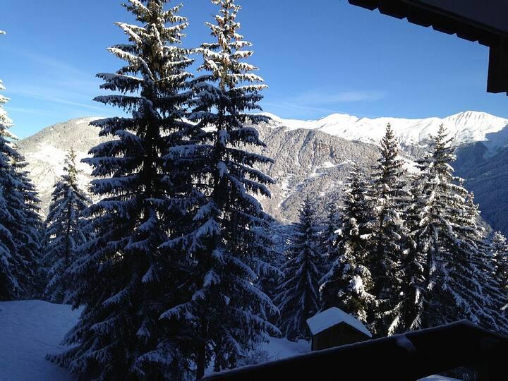 Superbe vue, accès skis aux pieds, très agréable