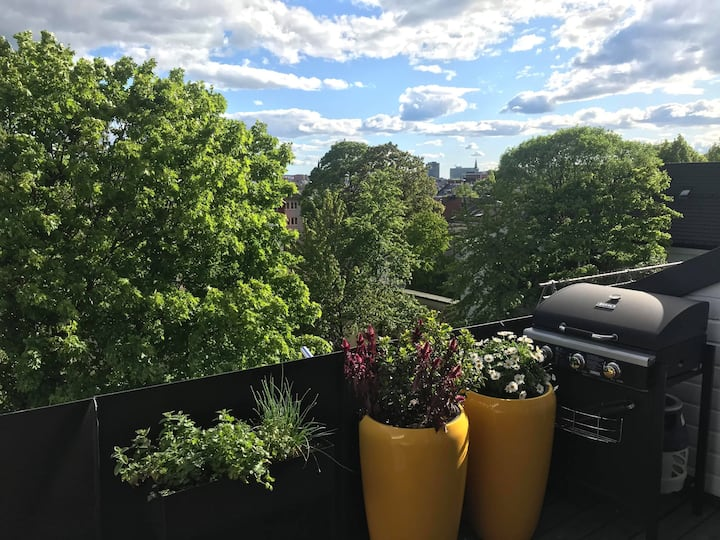 Modern top floor flat - Roof terrace - Garage