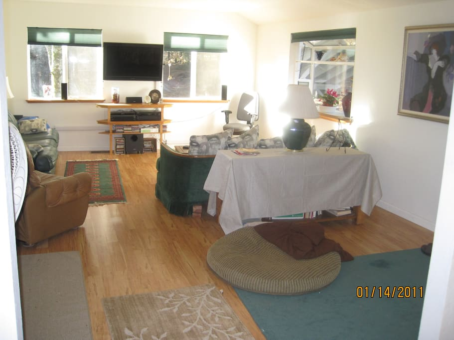 Large spacious living-room with a queen sofa foldout bed. Large screen TV with HBO, SHO,  etc...