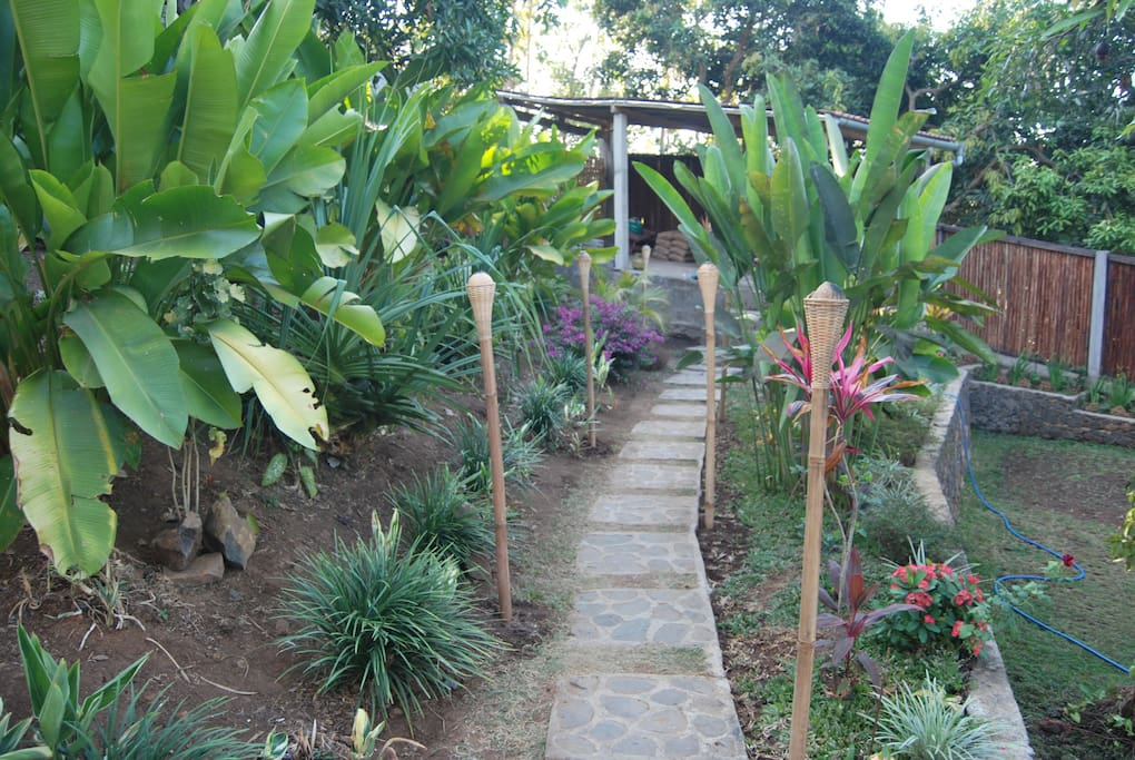 path to carport with tropical fruits and flowers