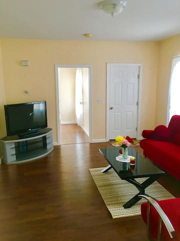 Living Room with TV, pull out sofa and coffee table.