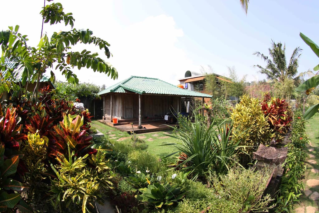 ganesha bungalow (with pool/kitchen house behind)