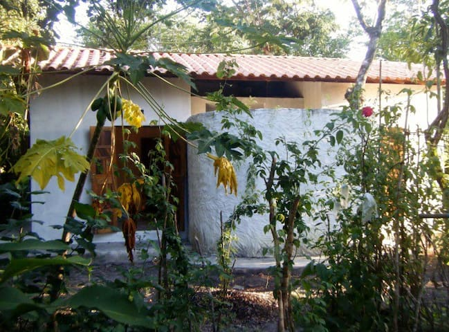 Casa na natureza a 750m da praia - Ilha de Boipeba, Bahia, Brasil - Hus