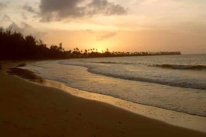 Breathtaking Seashore Paradise - Rio Grande - Apartemen