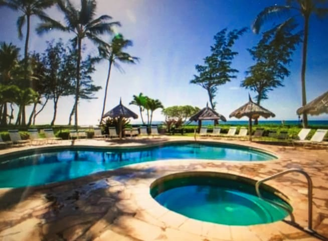 May 11-15 or 21-28 SPECIALS! Beachfront Top Floor! - Kapaa - Apartment