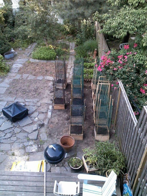 Private back yard with garden and deck.