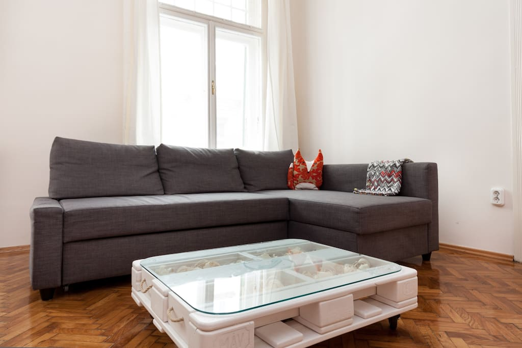 living room with double roll-away couch