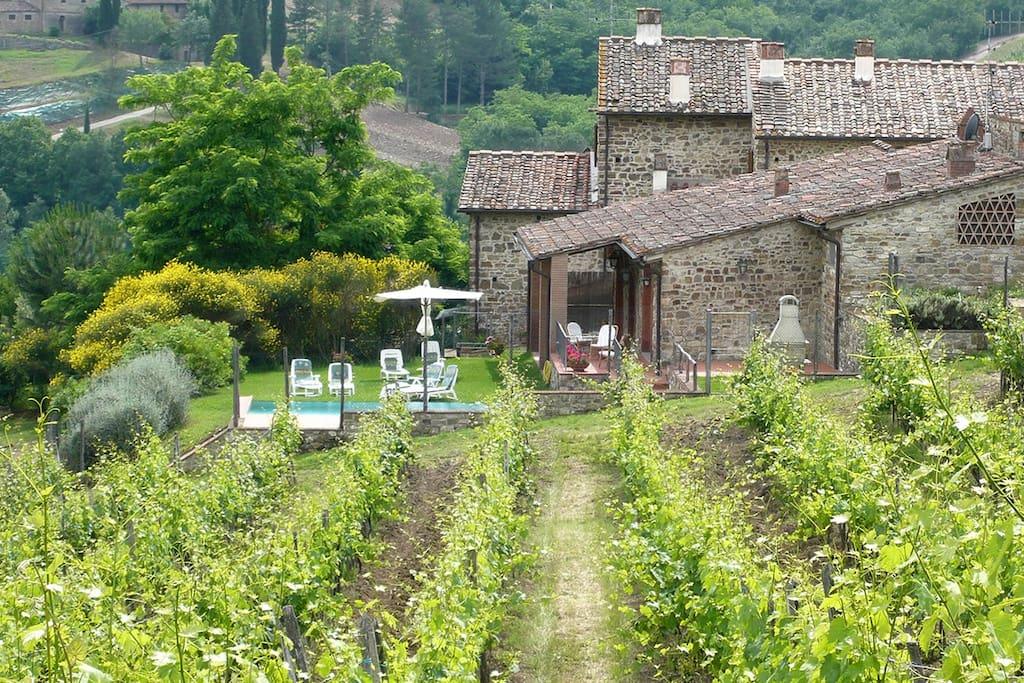 La villa immersa nelle vigne