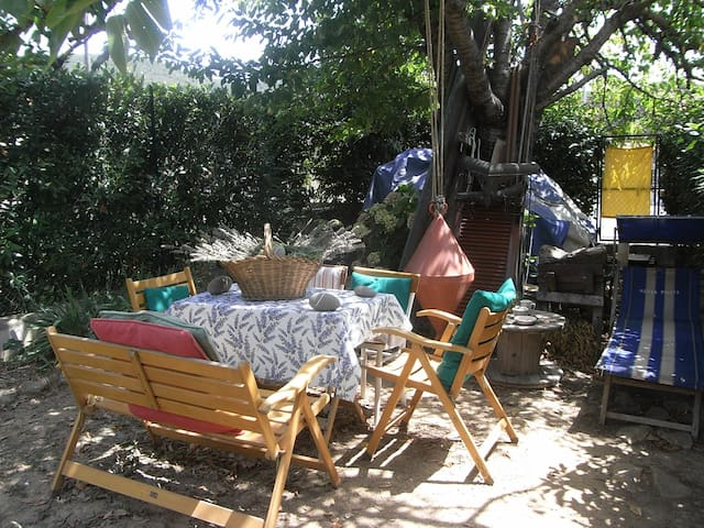 House's country in Maremma Tuscany - Braccagni - Bed & Breakfast