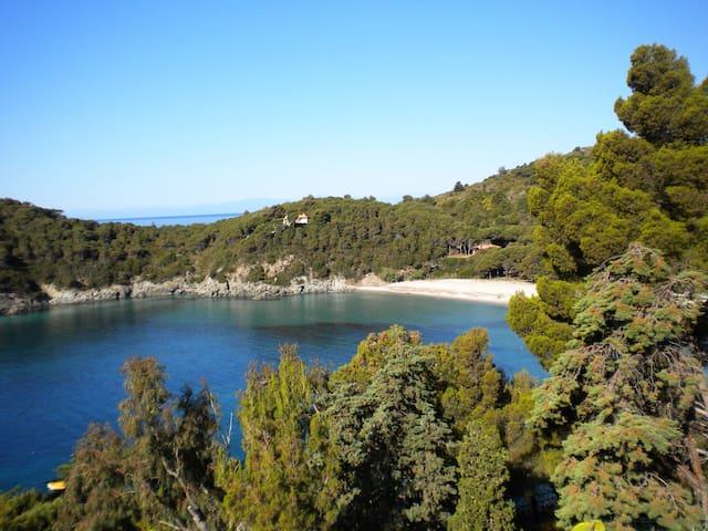 Appartamento nel Parco Nazionale dell'Isola d'Elba - Vallebuia - House