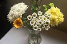 Daily flowers