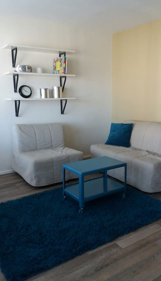 Two comfortable sofas / sofabeds