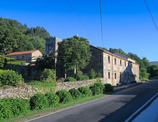 Vagalumes - A Estrada