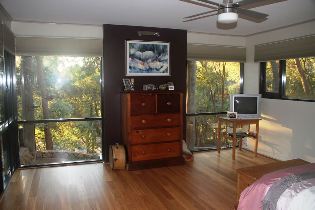 Master bedroom in the morning light. Bottom floor. Note the galahs feeding outside.