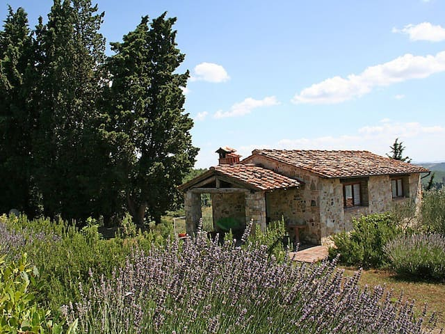 Un fienile nel Chianti with view and pool