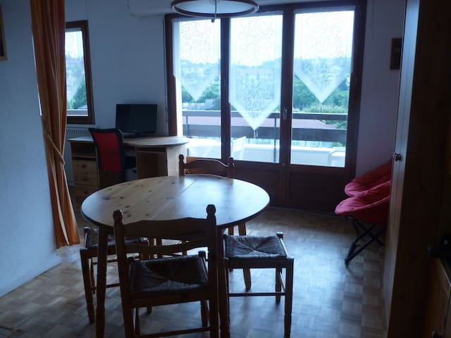 Bright studio with a large balcony & superb view