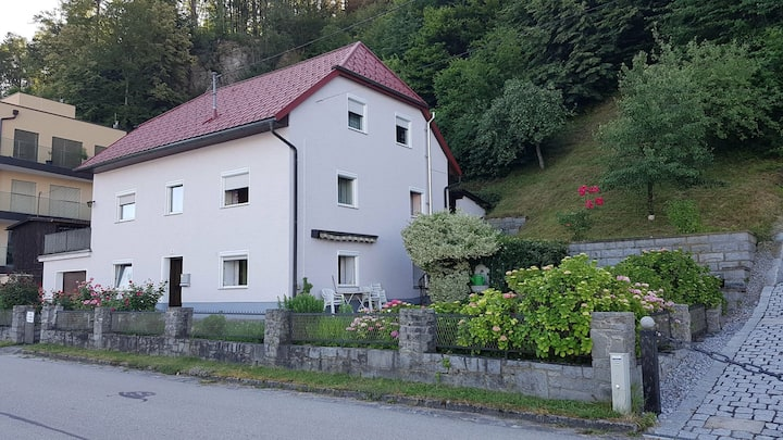 220m2 Apartment, 8 rooms, 19 Single beds near Linz