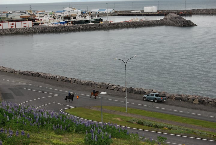 Bikers Paradise 4, Ólafsvík