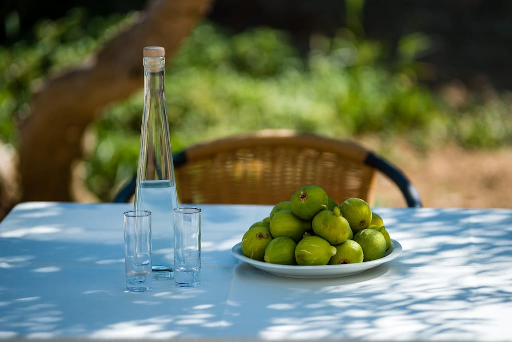 Terrace Table with some of my Home Natural products, Grape Brandy (Rakija) and Figs.