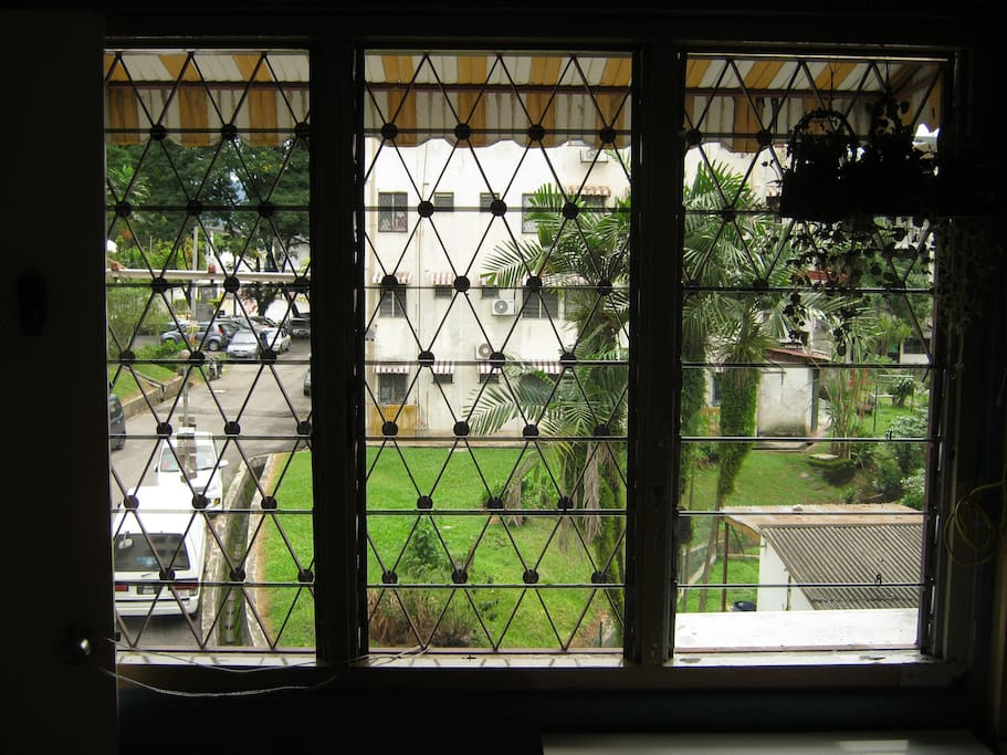this is the window view. green view...