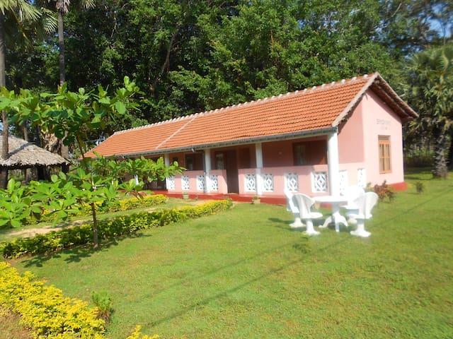 Brindhavan Cottage - 1 - Nilaveli - Hus