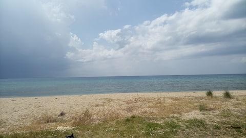 Η παραλία βρίσκεται στα 20 μέτρα απόσταση από την αυλή του σπιτιού.