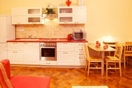 Apartment Lucy in Liberec - Liberec  - Bed & Breakfast