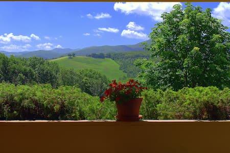 Tenuta La Tegolaia- Estate in Ponteginori/Volterra - Ponteginori