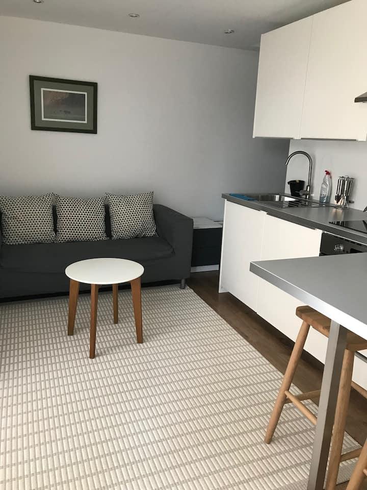 Studios flat near Twickenham and Richmond