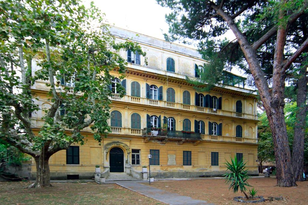 the building from inner garden