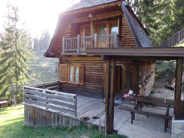 Our cosy chalet in the woods - spring picture