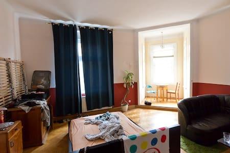 Big! Room in Linz, Alturfahr - Linz - Huoneisto