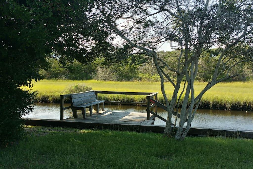 Private dock in backyard