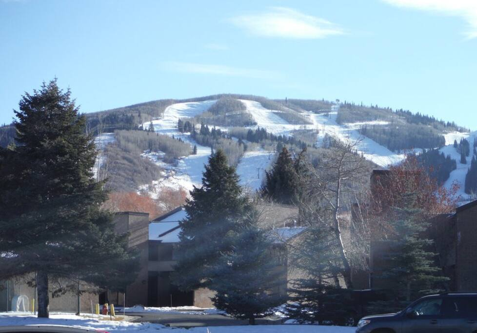 Walk or ride the free shuttle to Park City Resort, steps from the condo.