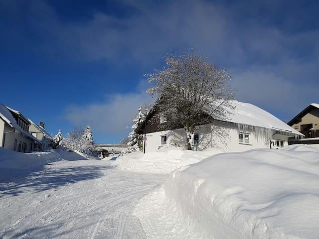 """Haus am Berg FeWo """"Waldstorchschnabel"""""""