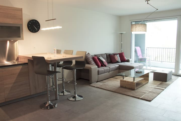 Modern and quiet apartment. - Meyrin - Condomínio