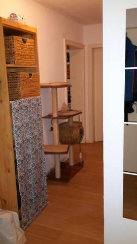 Ruhiges Zimmer, klein aber fein :-) - Freiburg im Breisgau - Apartment