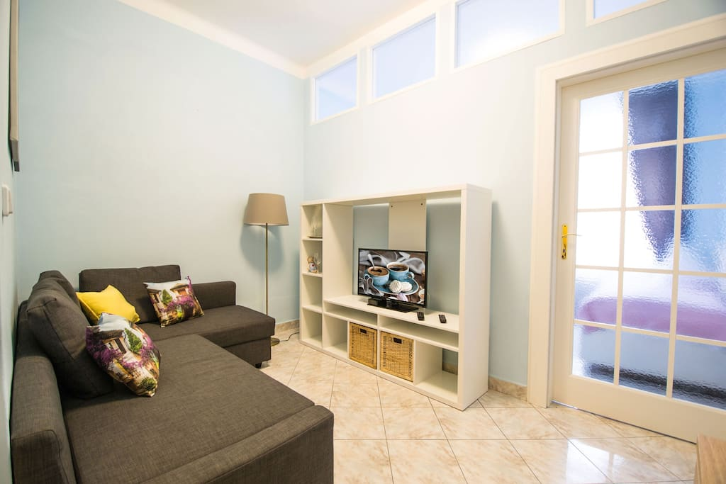 Spacious living room with convertible sofa and flat screen TV