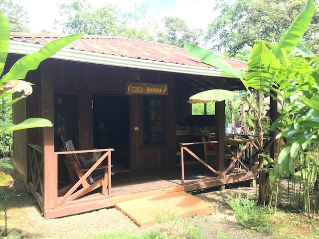 Coco Lindo, cabina coco banana