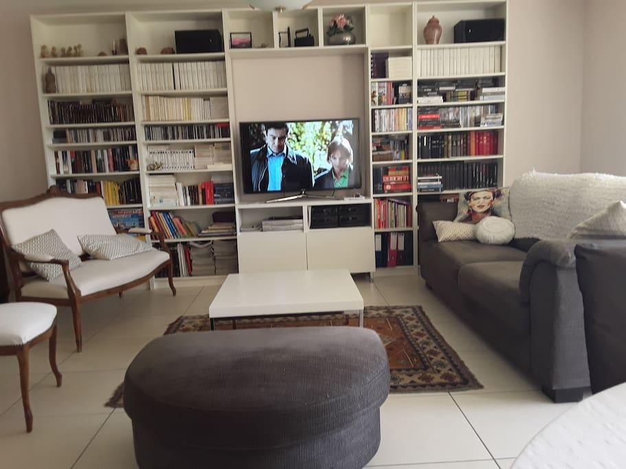 Coin salon avec téléviseur et bibliothèque