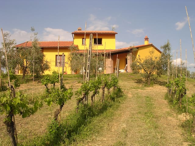 Exclusive holiday home CostaalBagno - Montopoli - House