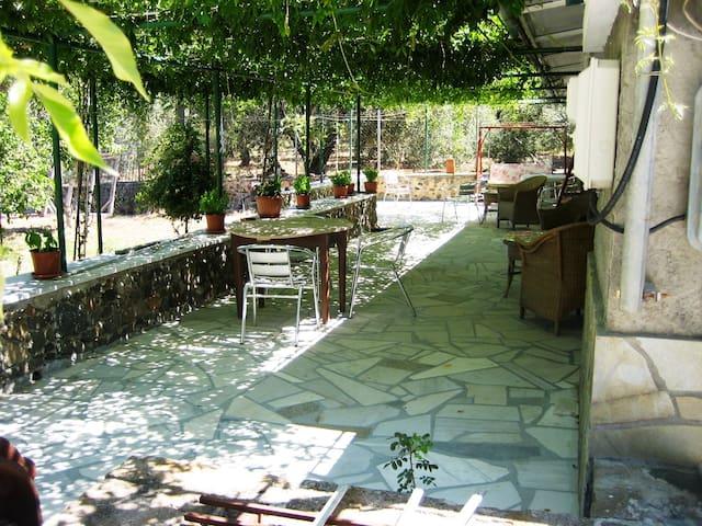 Sunny House - Ugliana - Efthalou - Apartamento