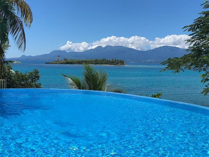 Magnifique logement vue mer, piscine à débordement