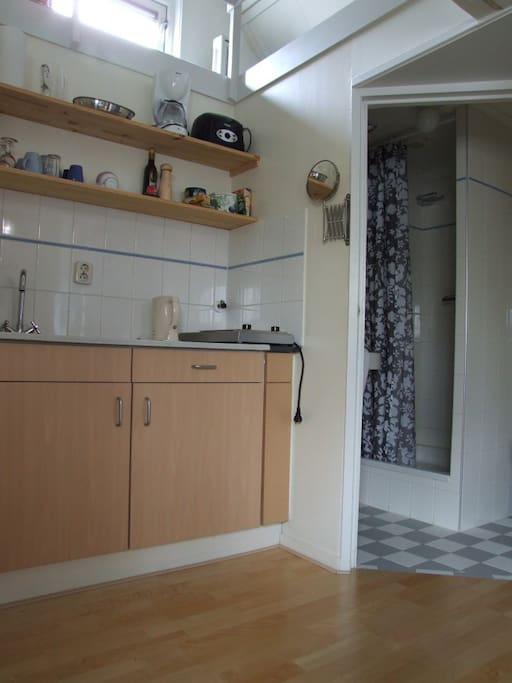 Kitchenette and entrance to bathroom